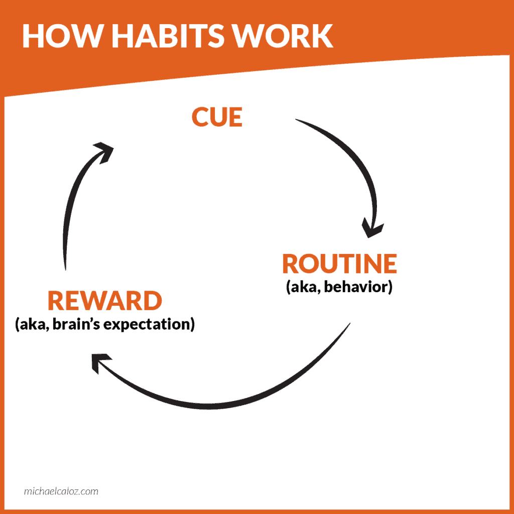 The cue-routine-reward loop