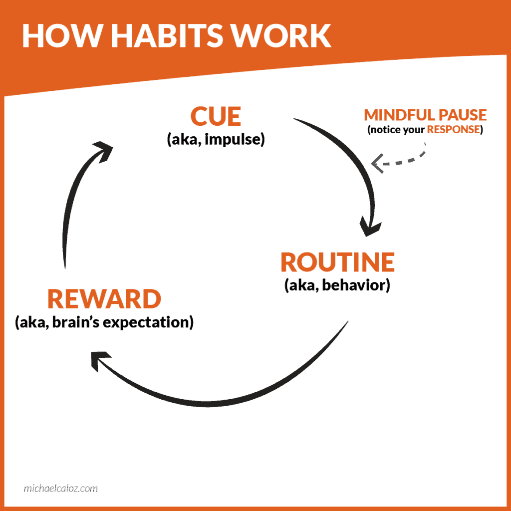 The cue-routine-reward loop plus the mindful pause